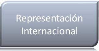 Representación Internacional